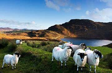 Photography Tour Ireland
