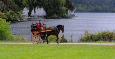 tours in ireland muckross parks